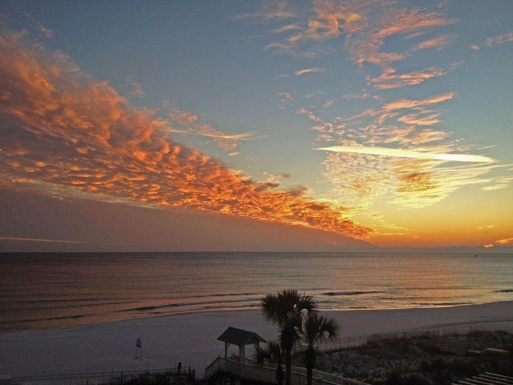 Miramar Beach, Florida by Sonya Roxanne