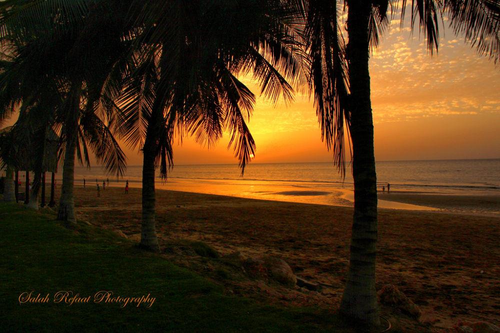 Sunset  by Salah Refaat