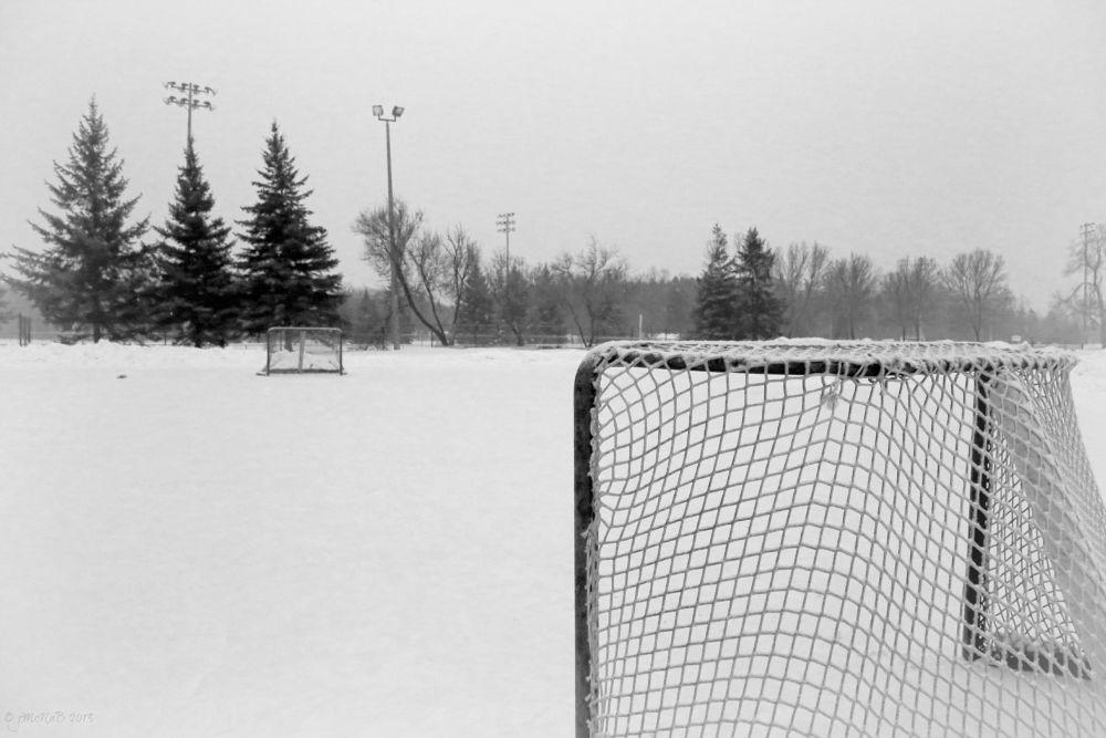 Empty nets by Janine McNab