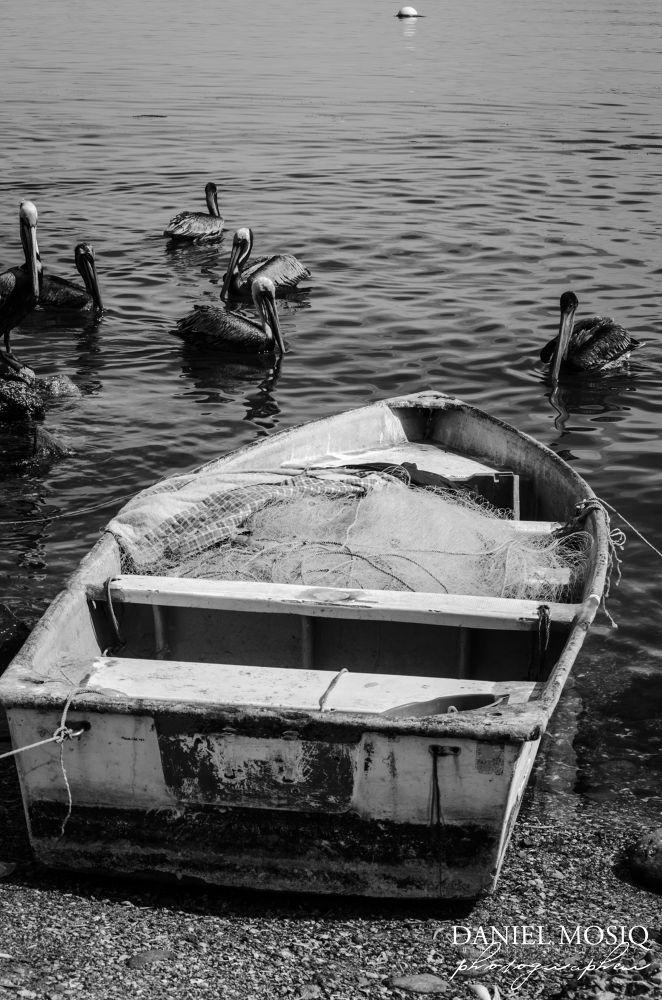El Mar by Daniel Mosiq