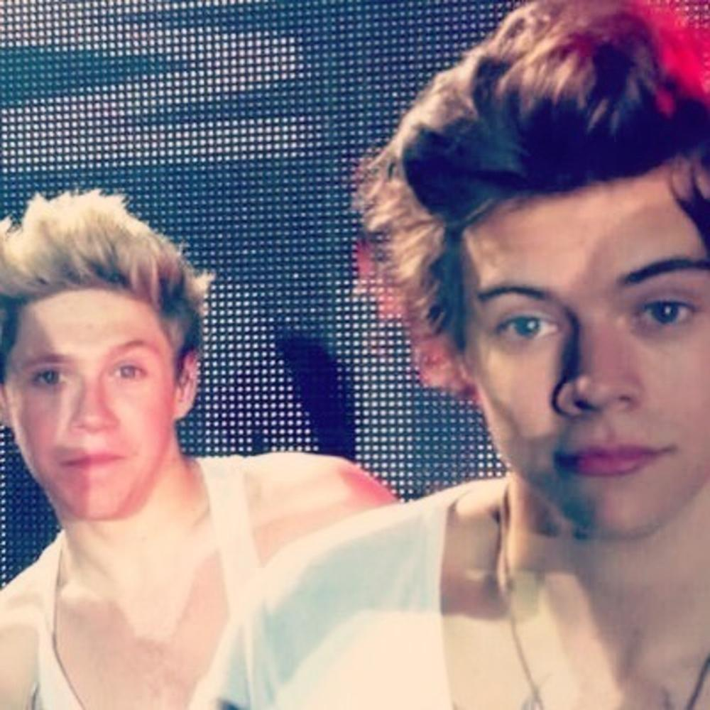 Harry Styles And Niall Horan by HarryStylesFan
