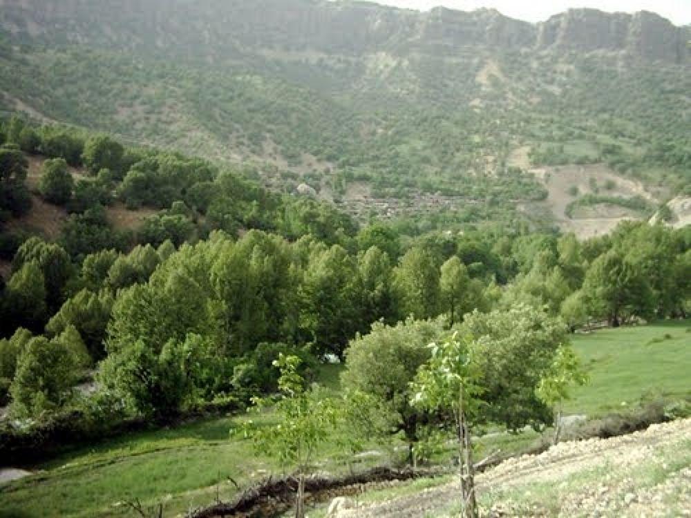 Photo in Random #روستای #پراشکفت