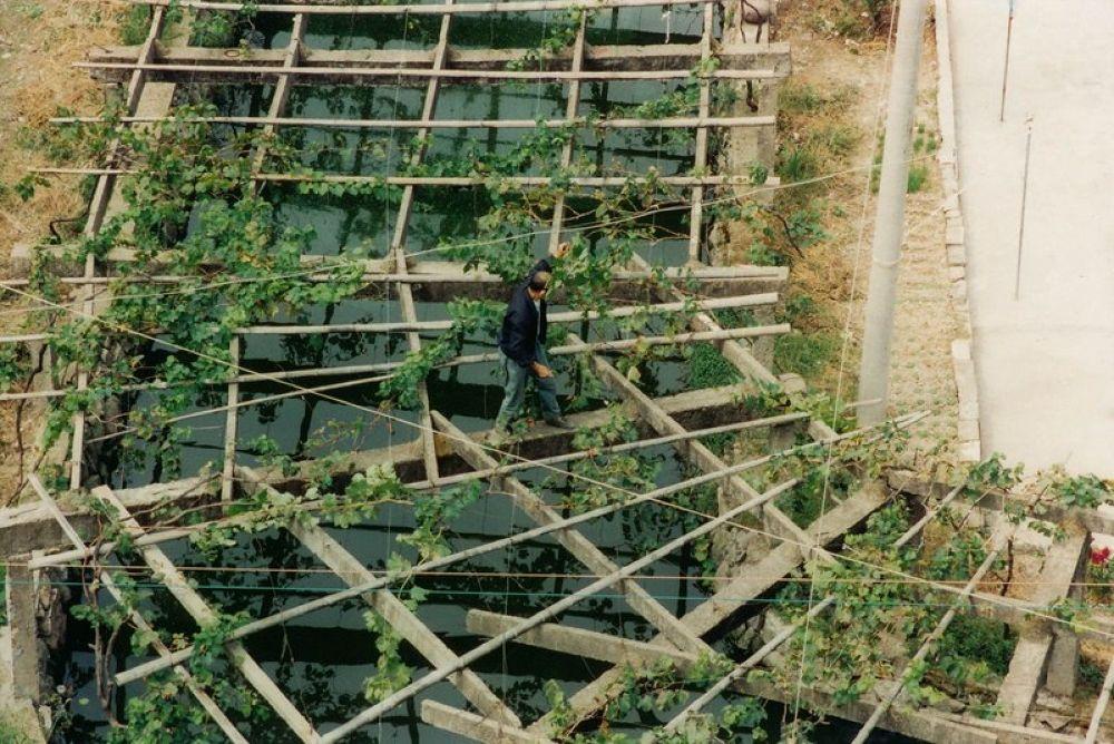 Zhejiang_Tengtou_Village_1995-110 by Arie Boevé