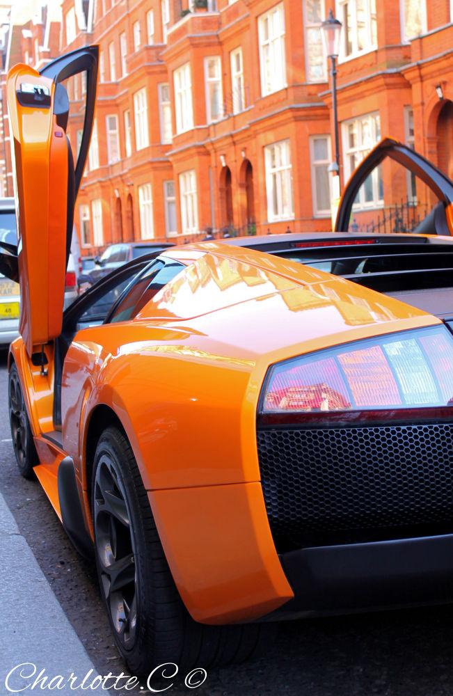 Sweet Murcielago Lamborghini by Charlotte Caussin