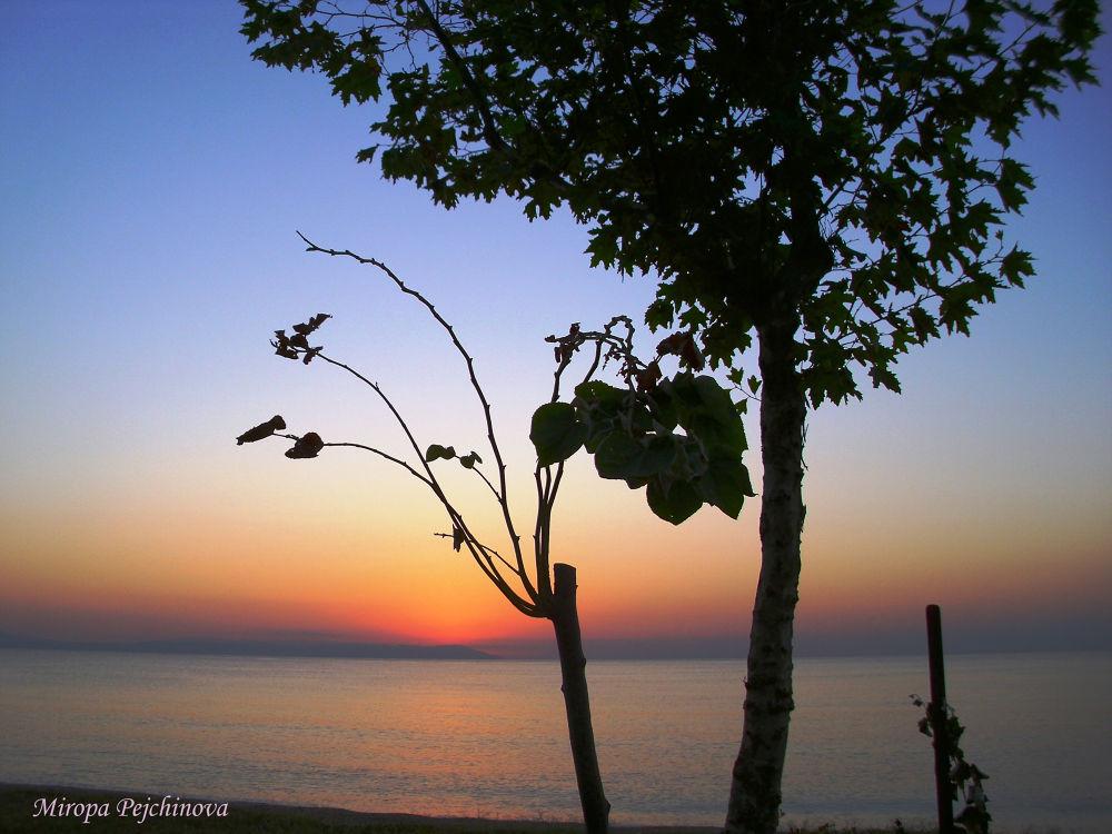 sunrise... by miropa