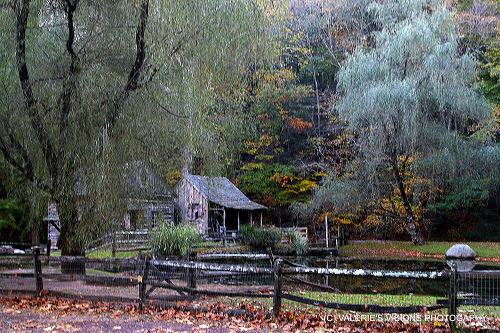 IMG_9650  The Cuttalossa Farm. New Hope Pa. by valsvisions