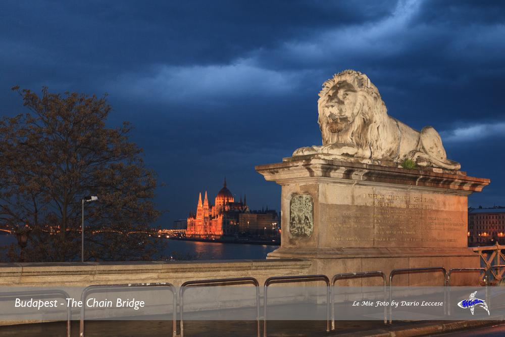 Chain Bridge by Dario Thecap Leccese