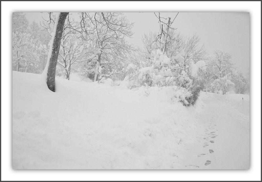 Winter3 by ivofrbezar1