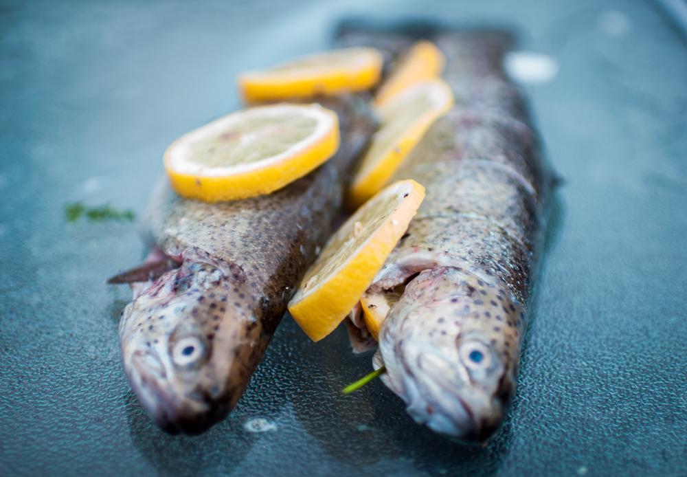 Photo in Food #food #fish