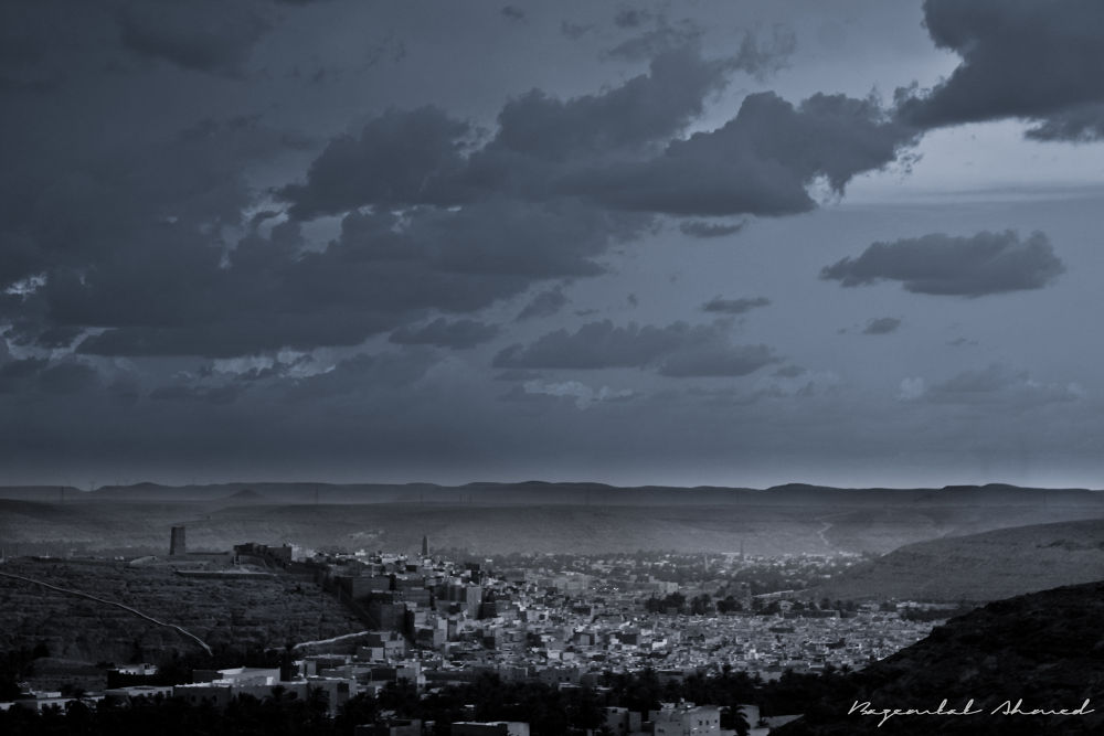 IMG_1462 by bazemlalahmed