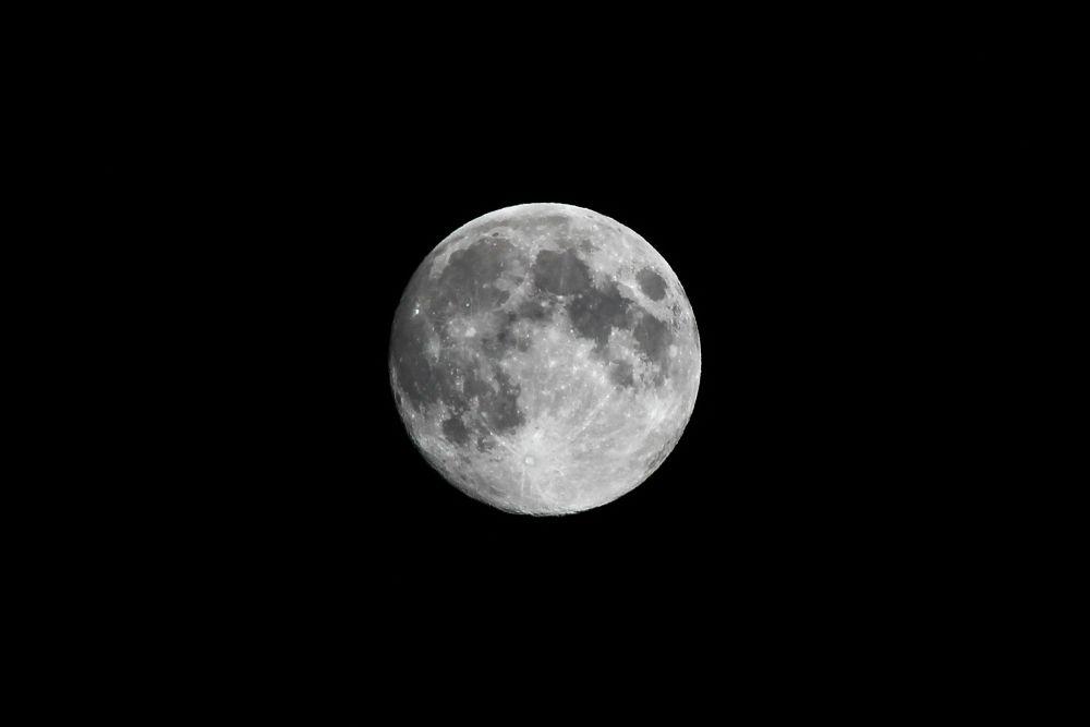 Luna llena by cristina_orchid