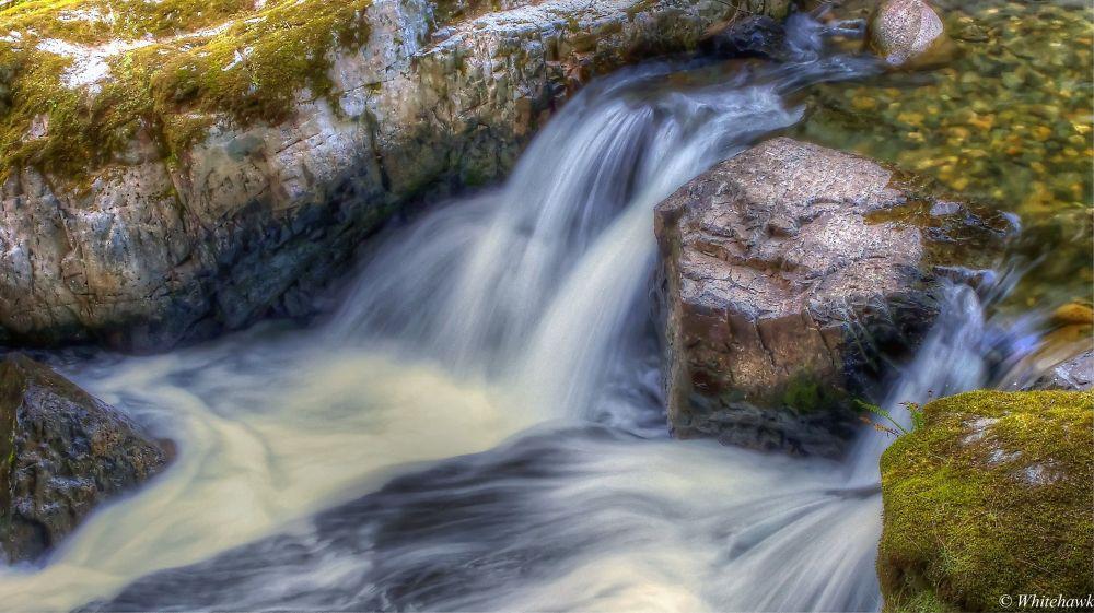 Brice Creek  by whitehawk