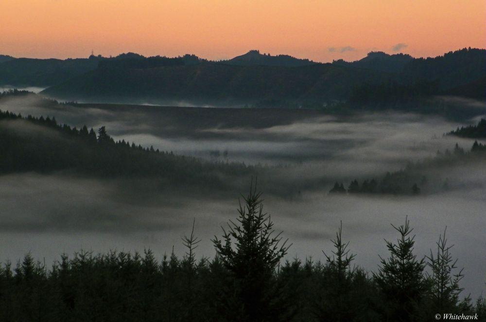 Wolf Creek in the mornin by whitehawk