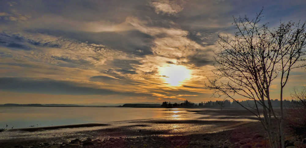 Sunset fern ridge by whitehawk