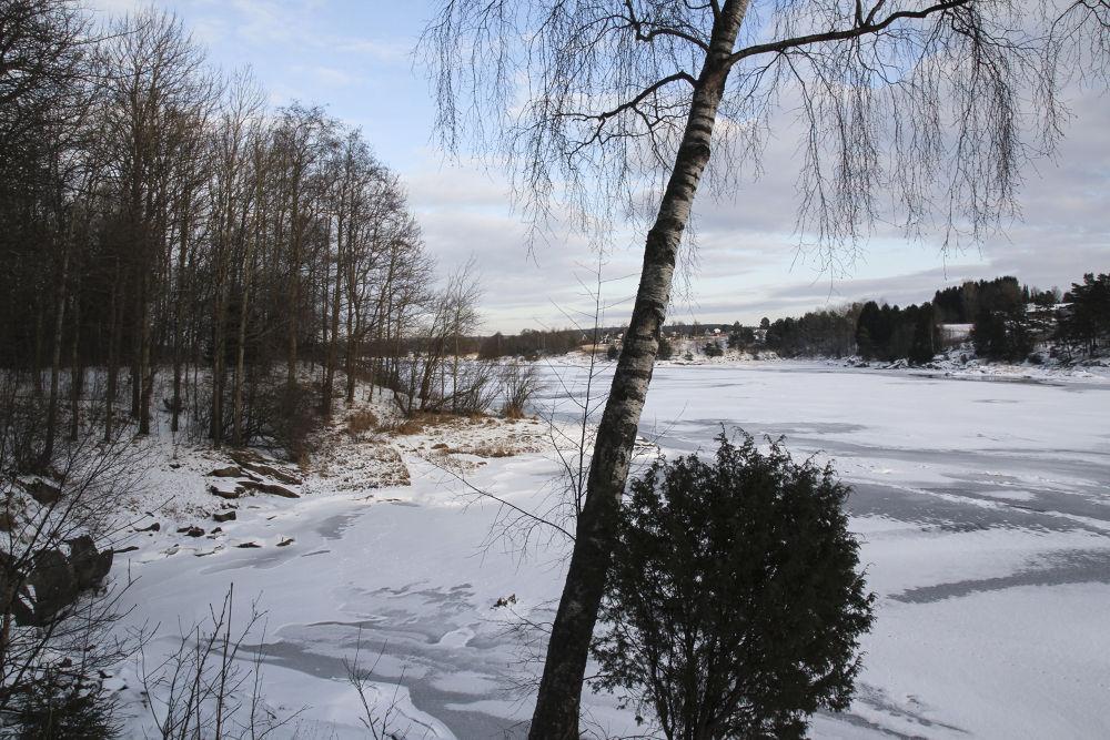 Vinter by Johann