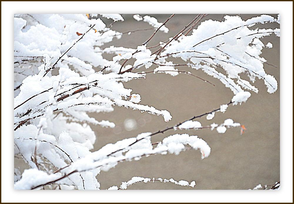 Snow1 by ivofrbezar1