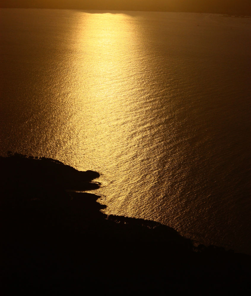 lienzo dorado by o_lo