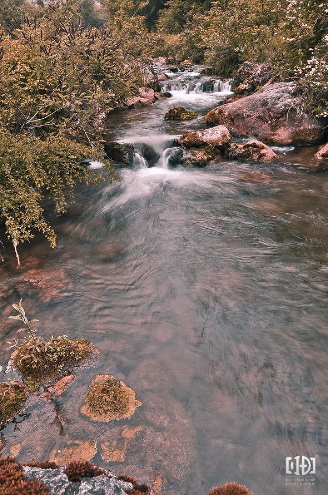 river by Igor Djordjevic