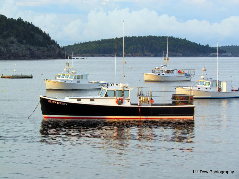 Photo in Sea and Sand #lobster boat #ocean #maine #mount desert island #bar harbor maine #bar harbor #elizabeth dow #elizabeth dow photography