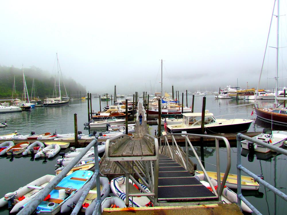 Photo in Sea and Sand #dock #marina #boats #yachts #lobster boats #maine #northeast harbor maine #mount desert island #mdi #fog #elizabeth dow #elizabeth dow photography