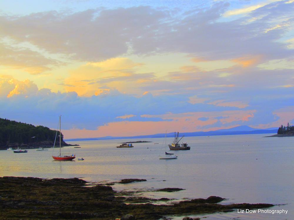 Photo in Sea and Sand #sunset #boats #ocean #yacht #seaweed #maine #new england #mount desert island #mount desert island maine #bar harbor maine #elizabeth dow #elizabeth dow photography