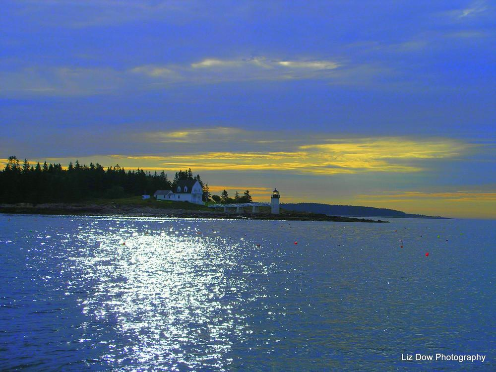 Morning Splendor  by Liz Dow