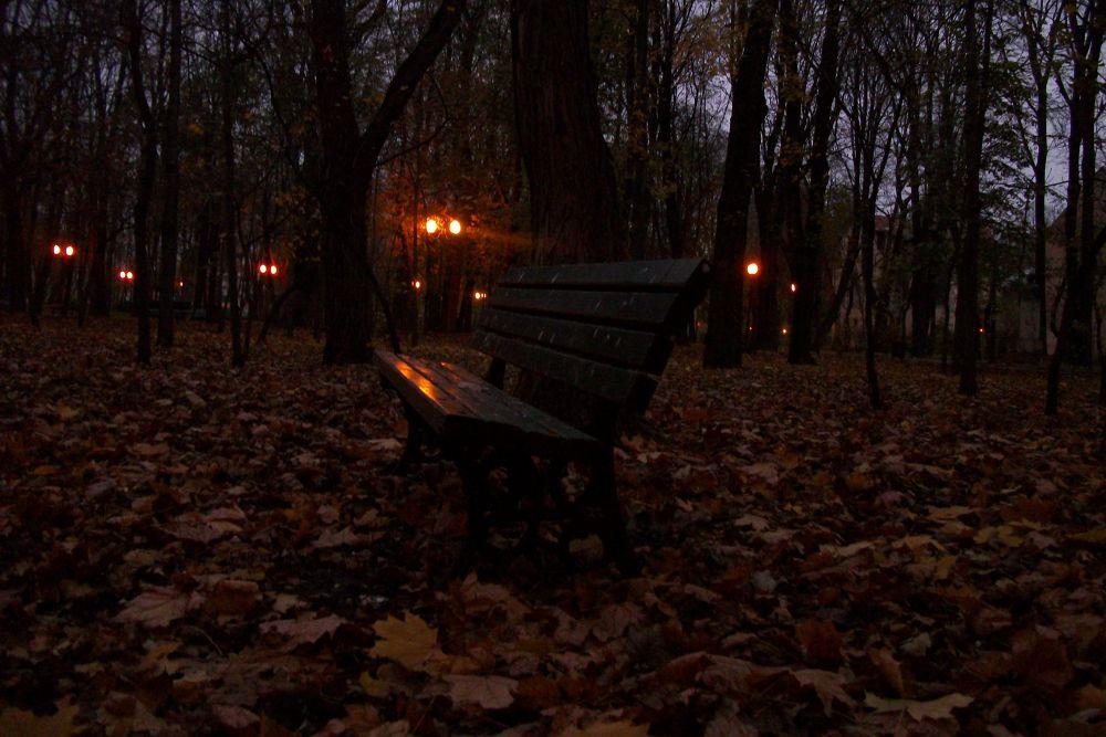 autumn evening by Vlad Preutu