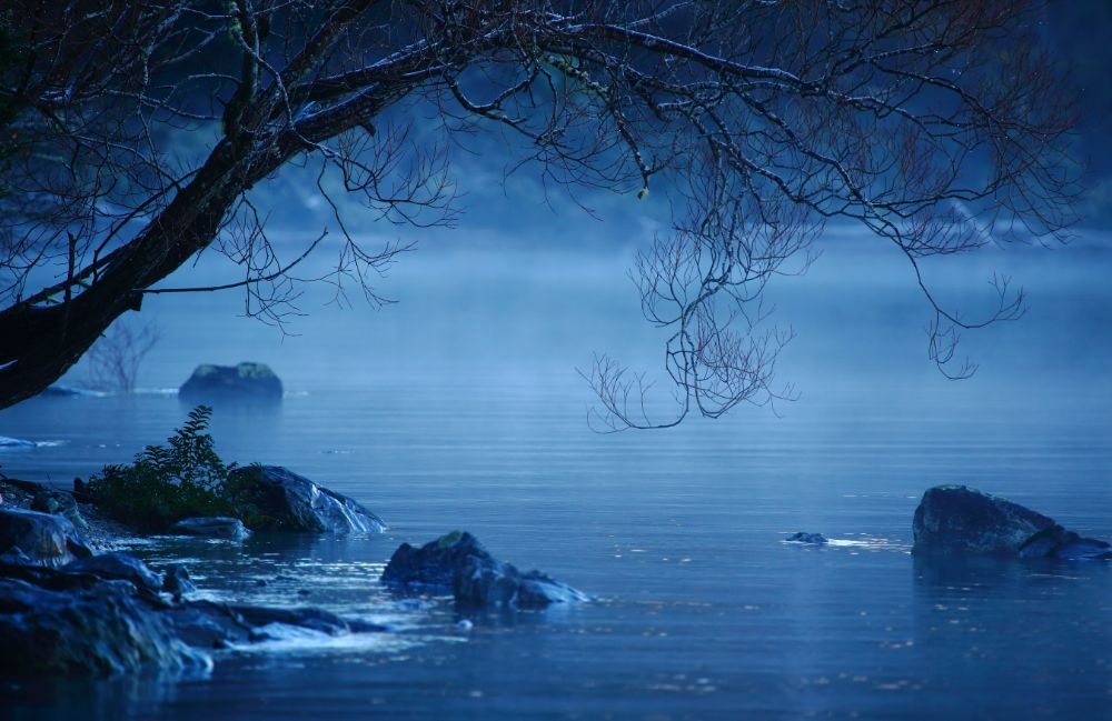 Cold Misty Morning - Lake Wakatipu by Greig Howell