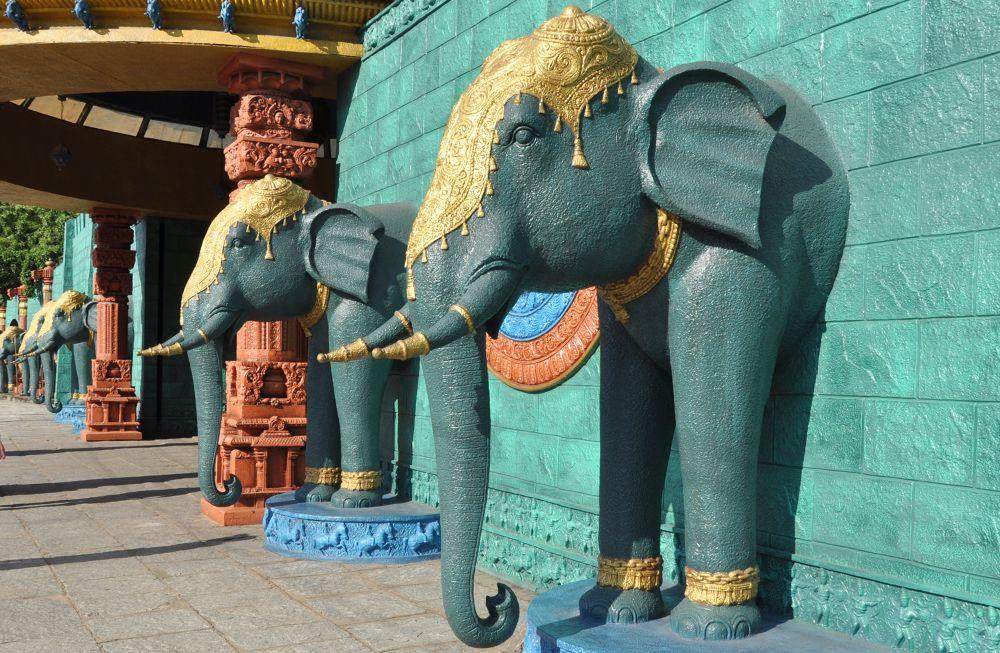 Elephants that dont breath by Ashok n Pulliyerengi
