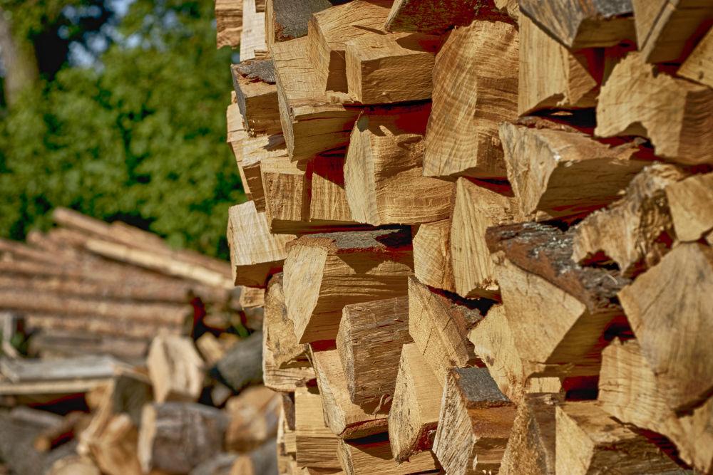 Wood by TomPiotrowski