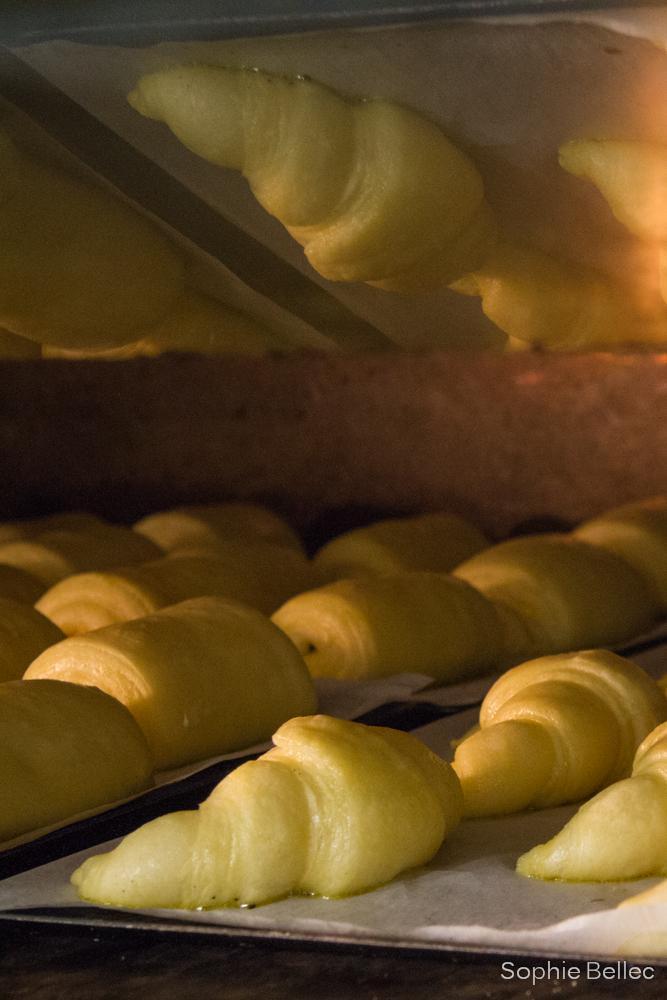 Photo in Food #pastry #croissant #boulangerie rose #prenons soin de votre image