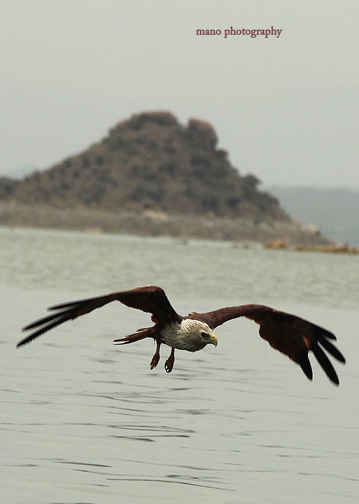wants to swim by Manoj Kpn