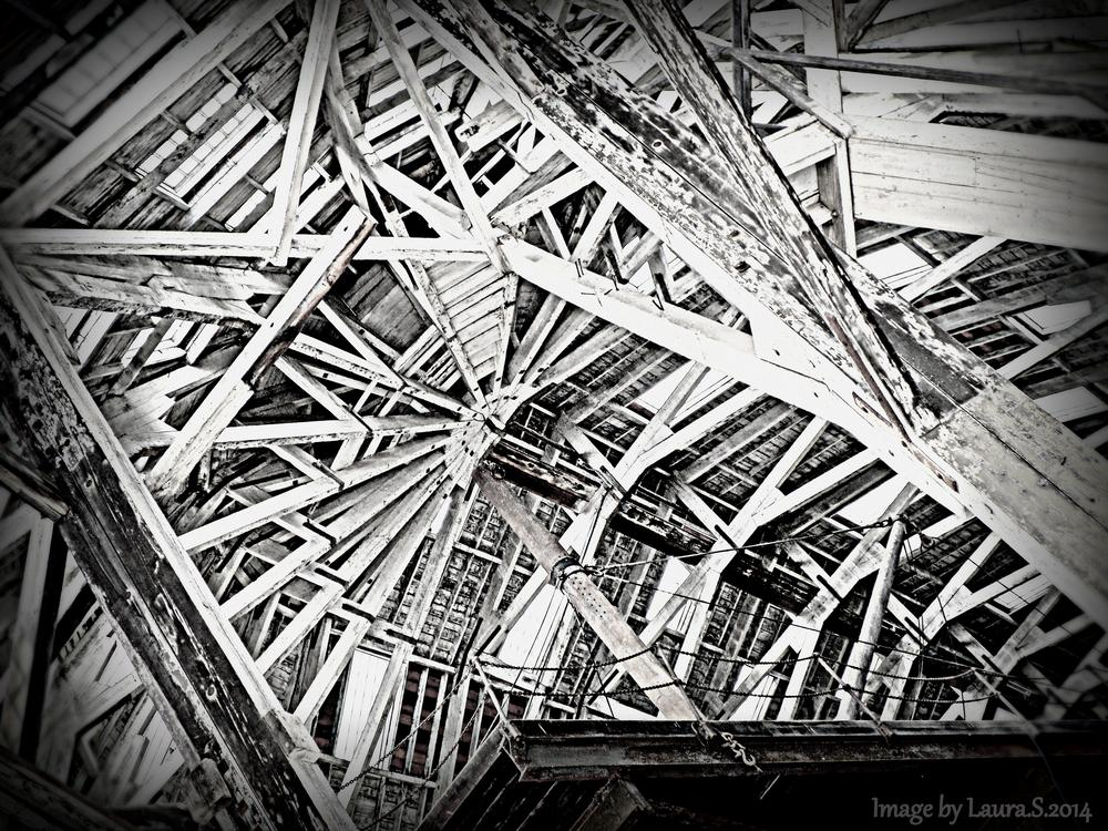 Old Boathouse Roof - B&W by LauraGSmith