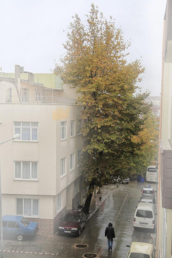 Sokakta Sonbahar by İbrahim YILDIZ