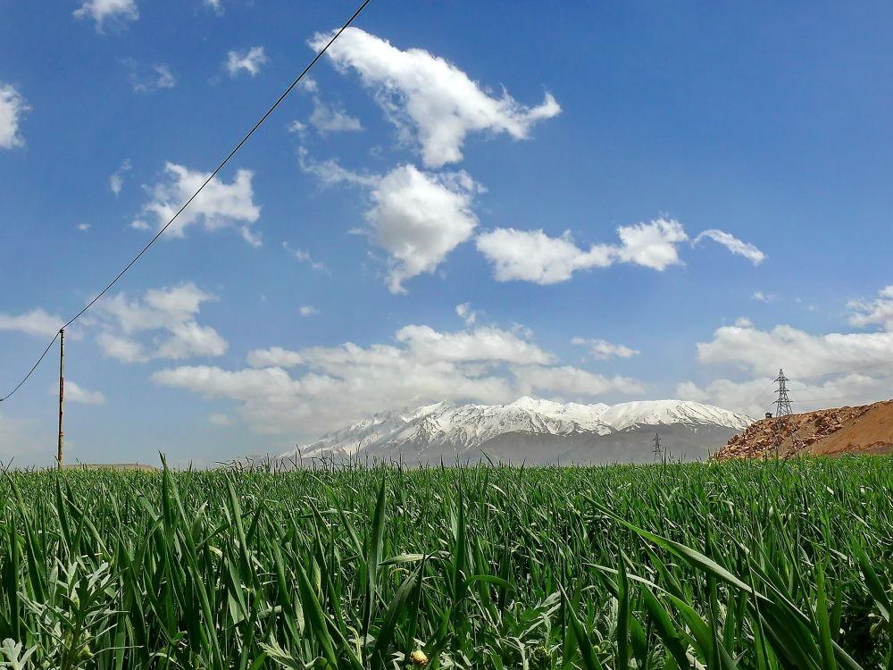 P1190023 by Ahmad Hezavei
