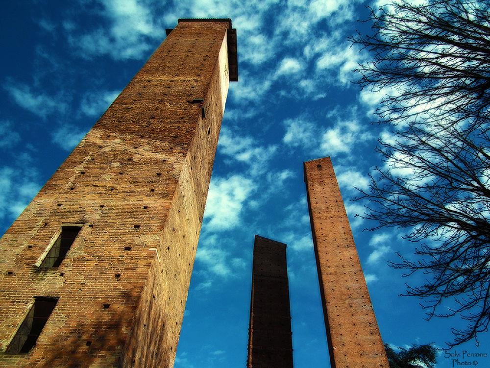 The-three-towers-from-below-Pavia-31-marzo-2013-photo-di-Salvi-Perrone.jpg by SalviPerrone