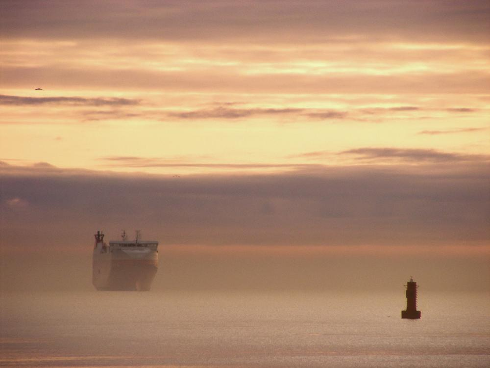 Photo in Sea and Sand #fog #ship #gulf of gdansk #sunrise #sea #gdynia