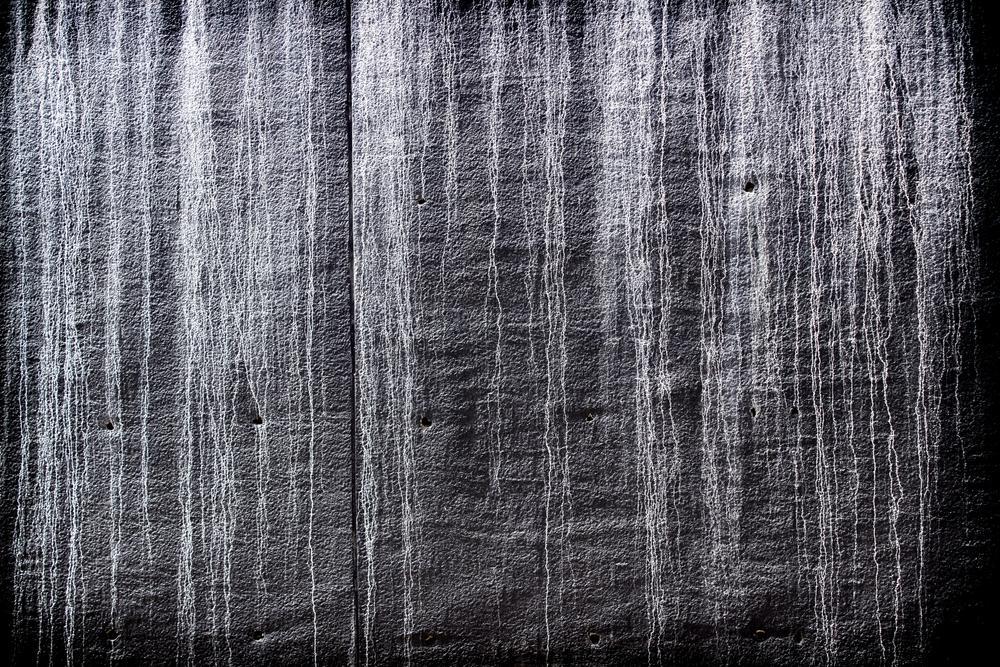 Le mur de la peur ; The wall of fear by Hacene CHAIB