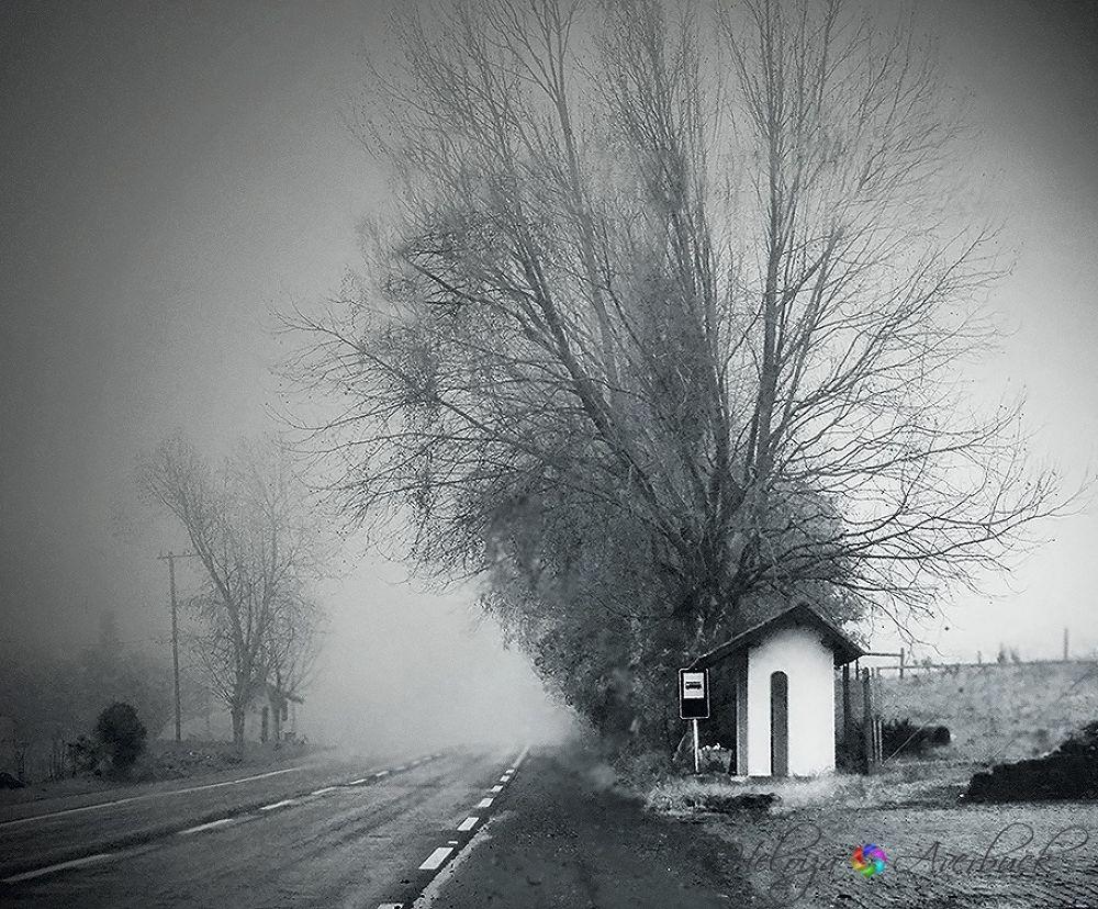 Mists by Heloiza Averbuck