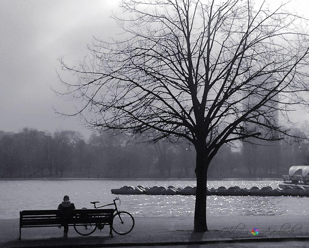 Foggy day by Heloiza Averbuck