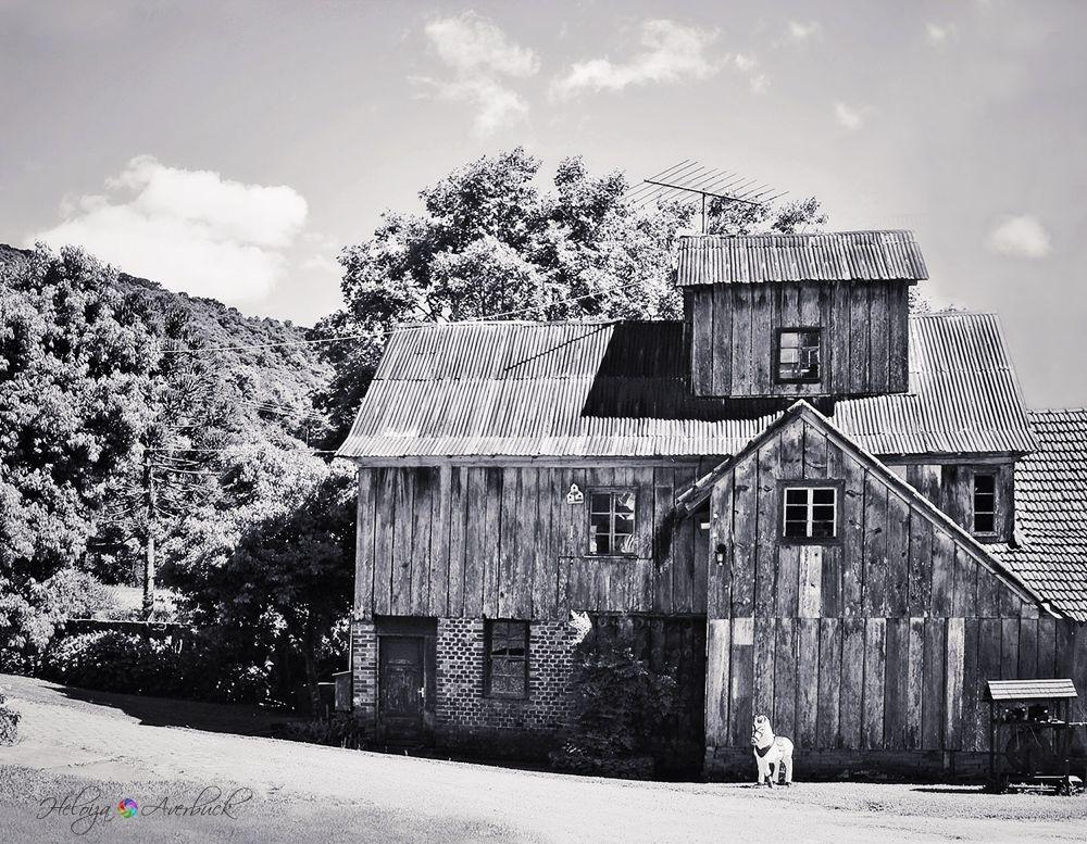 Home Sweet Home by Heloiza Averbuck