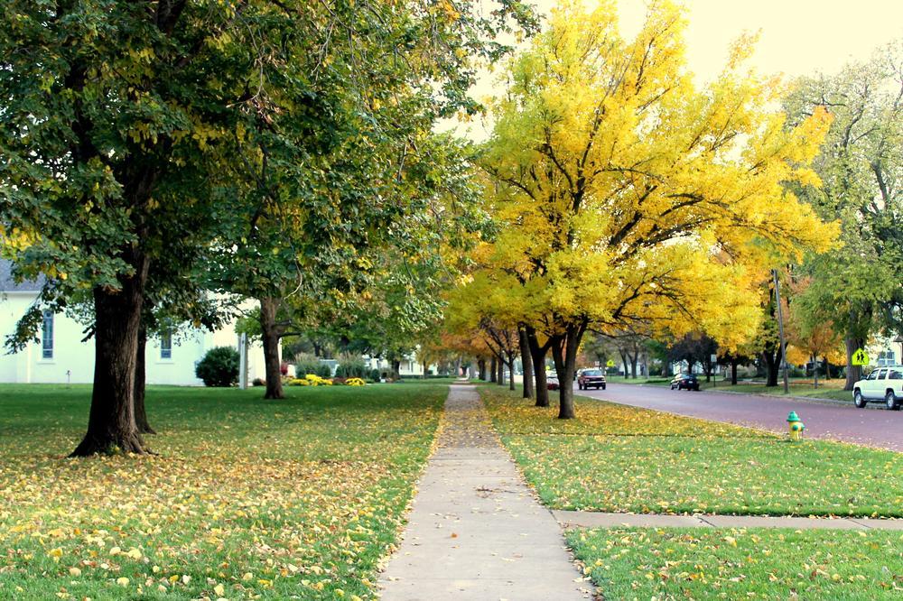 Beautiful Fall in Lindsborg,KS by Lamiya Korchiyeva
