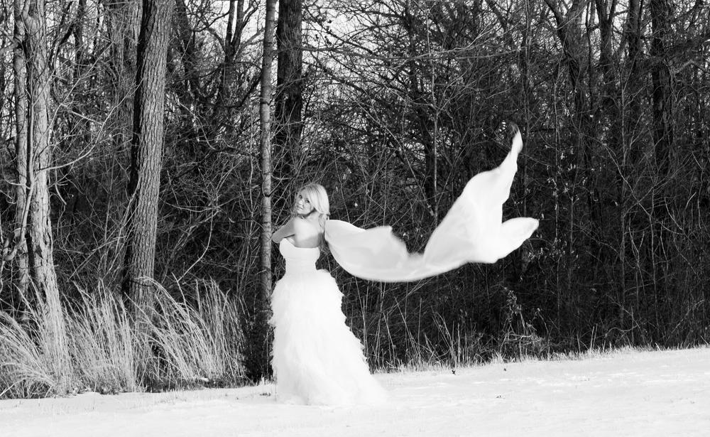 Photo in Black and White #frozen #tulle #snow