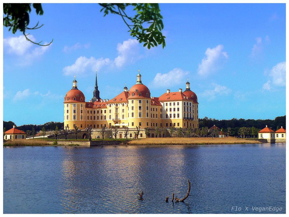 Schloss Moritzburg by Flo X VeganEdge