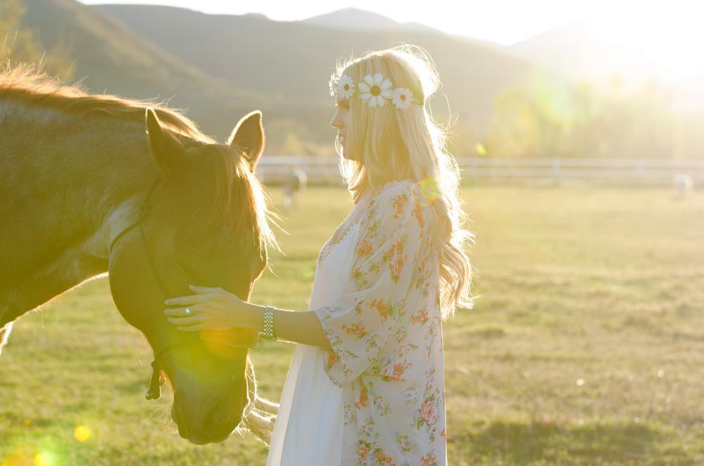 Photo in Animal #horse #flower child #field #sunset #sun glare #love #comfort #peace #peaceful
