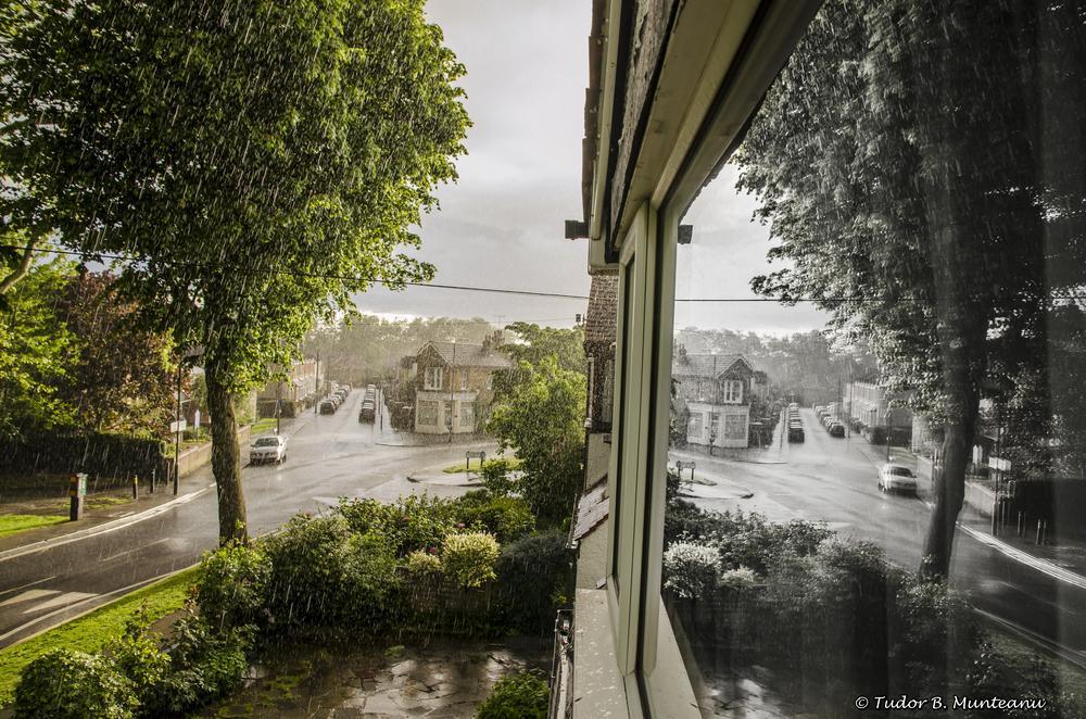 Photo in Random #london #reflexion #reflexions #rain #ploaie #wet #window #tree #car #road #black and white