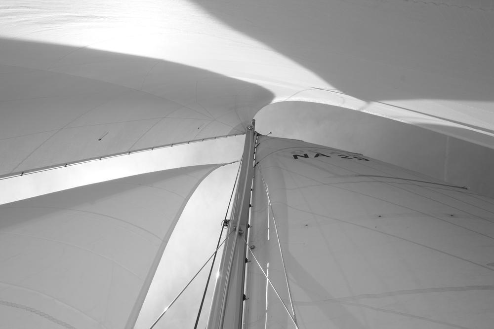 Photo in Black and White #sailing #boat #chesapeake #nautical #b&w