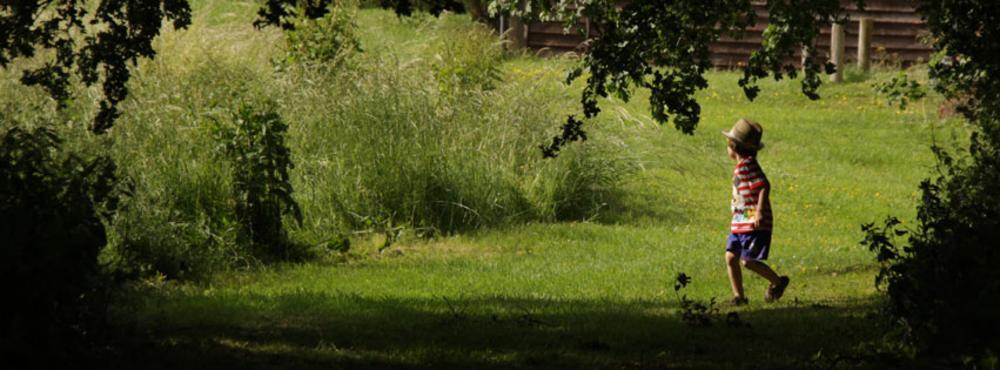 In the garden by Garry Hurstwaite
