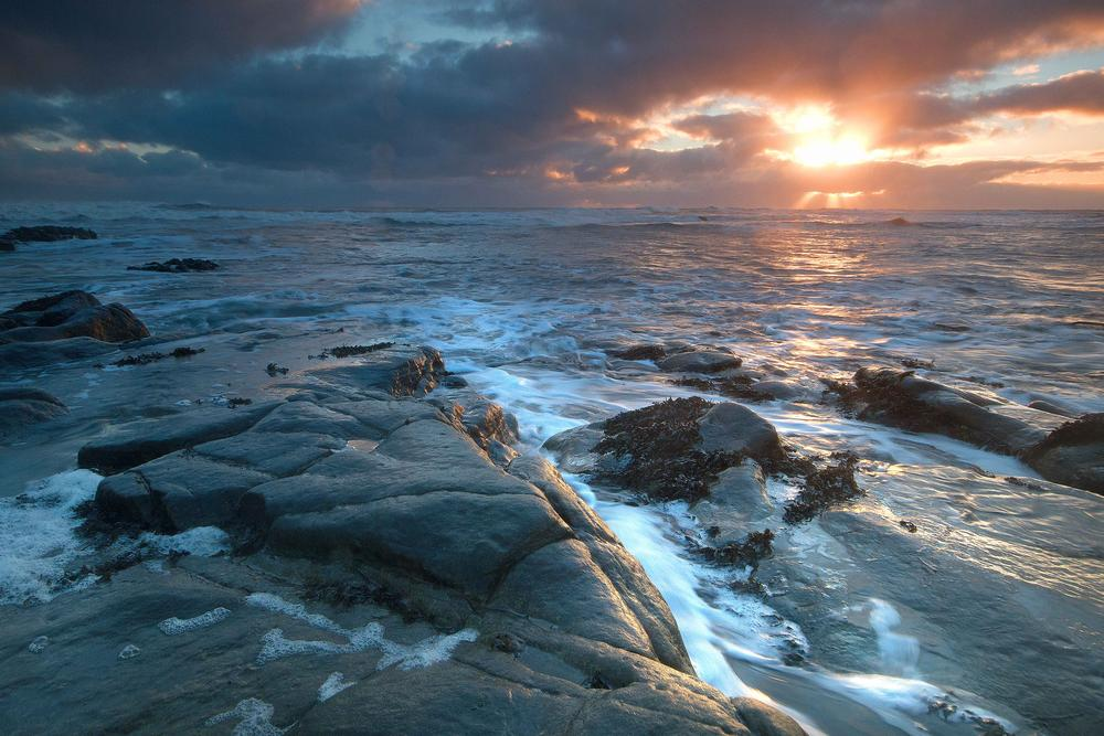 Cresswell by Neil Coleran-Photography