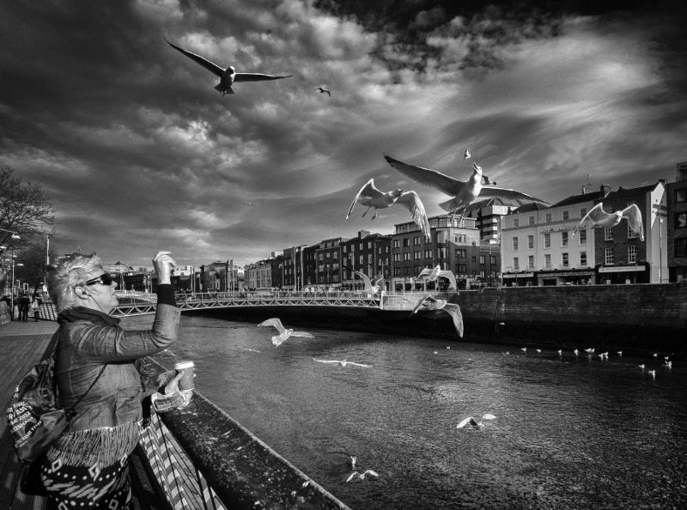 _3150078-Edit by Maciek Przeklasa